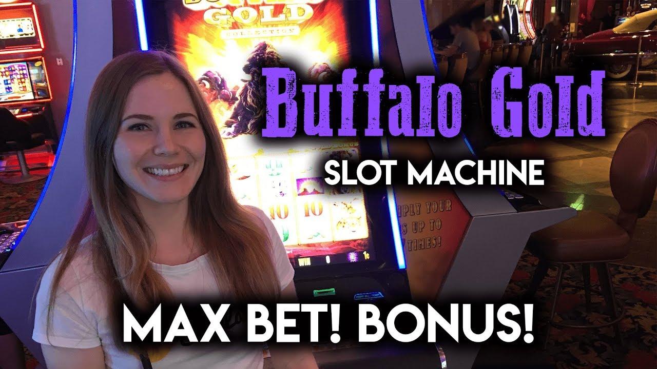 Max bet buffalo gold slot machine bonus youtube max bet buffalo gold slot machine bonus publicscrutiny Images