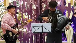 Autumn Leaves Christmas Accordion and Guitar - Hire Western Musicians with Birkun Productions