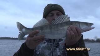 Рыбалка на базе «У МИХАЛЫЧА».