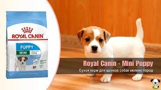 Сухой корм для щенков собак мелких пород от 2 до 10 месяцев · Royal Canin Mini Puppy