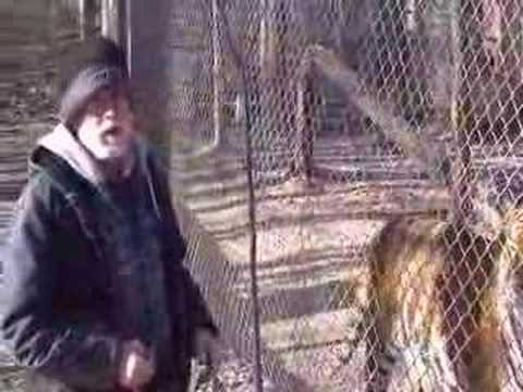 Center saves exotic felines