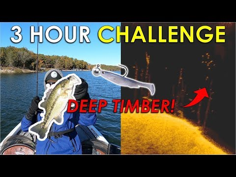 Swimbaits In 40ft Trees For Suspended Fall Bass! | 3 Hour Challenge