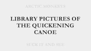 ARCTIC MONKEYS - SUCK IT AND SEE - LIBRARY PICTURES LYRICS