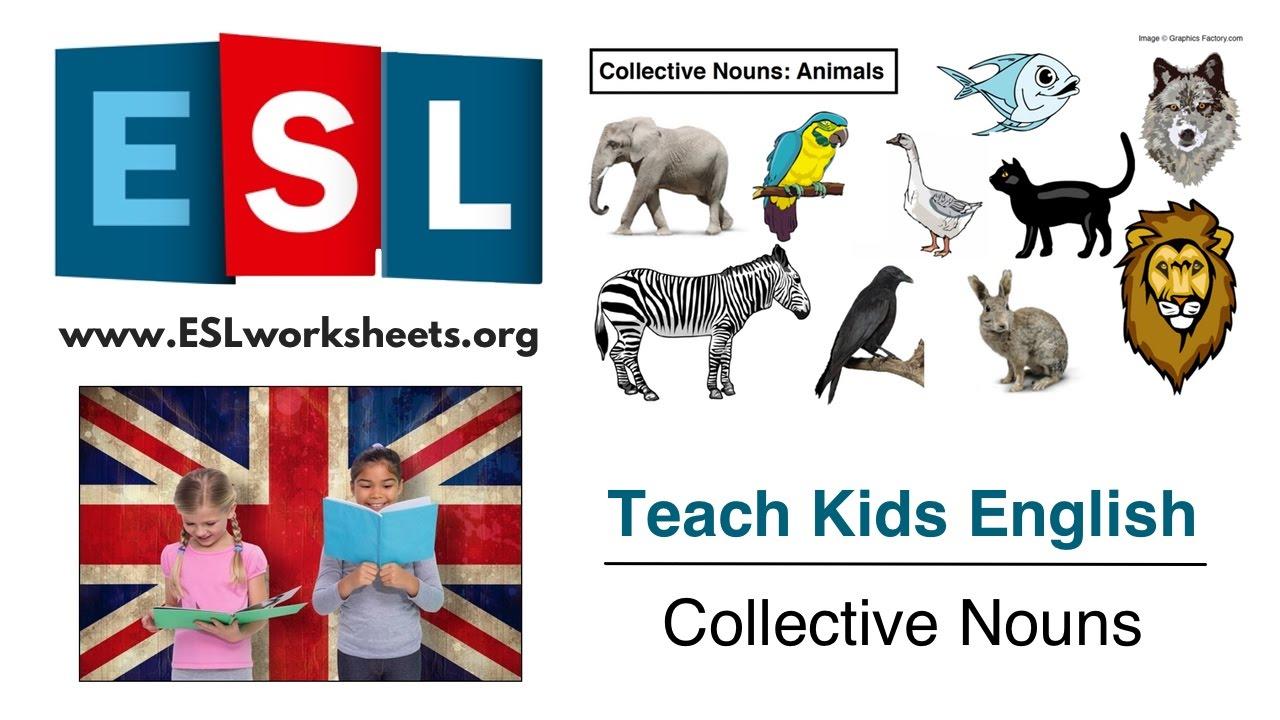 Collective Nouns ESL Worksheet Teach Kids English YouTube – Collective Nouns Worksheets