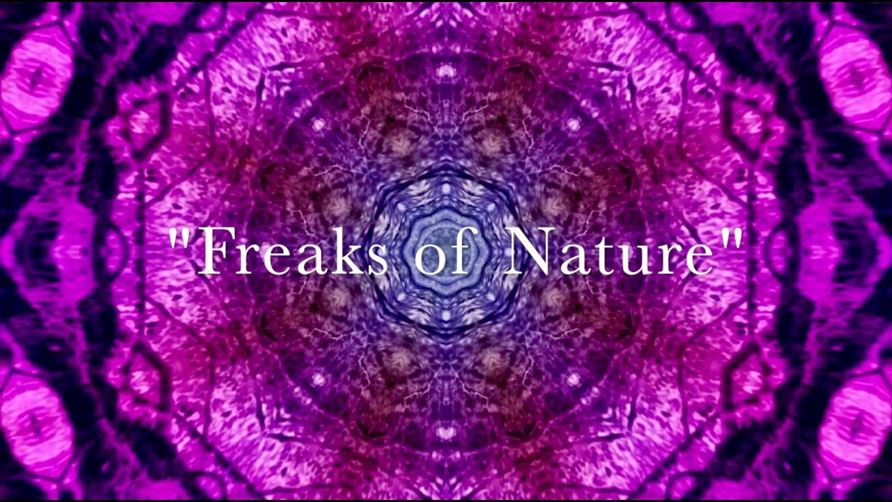 Freaks of nature 116 amputee sex 7