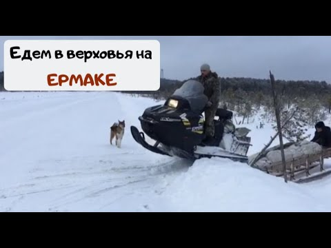 Поездка на Васюганские болота, Ханты, избы, охота...