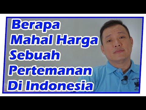 Berapa Mahal Harga Sebuah Pertemanan Di Indonesia