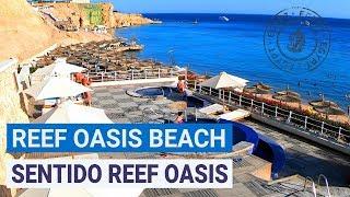 Полный обзор отелей Reef Oasis Beach Resort 5 и Sentido Reef Oasis Senses 5 Шарм эль Шейх