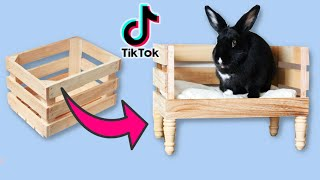 4 Life Saving Rabbit TikTok Hacks You Should Know!
