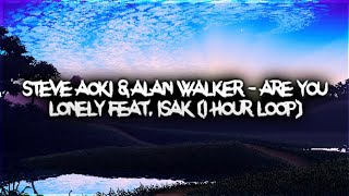 Download Steve Aoki & Alan Walker - Are You Lonely feat. ISAK (1 hour)