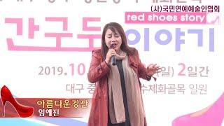 가수임예진,아름다운강산,(사)국민연예예술인협회,제6회 …