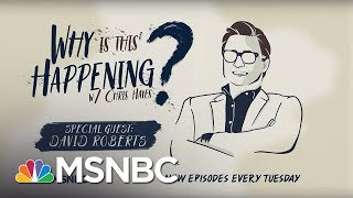 Chris Hayes Podcast With David Roberts | Why Is This Happening? - Ep 33 | MSNBC