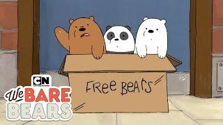 We Bare Bears | Potty Time (พากย์ไทย) | Cartoon Network