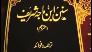 Shia vs Sunni   What's the truth   Proof from Sunni books Reply to Dr Israr) Part 13   YouTube