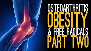 Osteoarthritis, Obesity and Free Radicals with Dr. Griffin [Part 2]