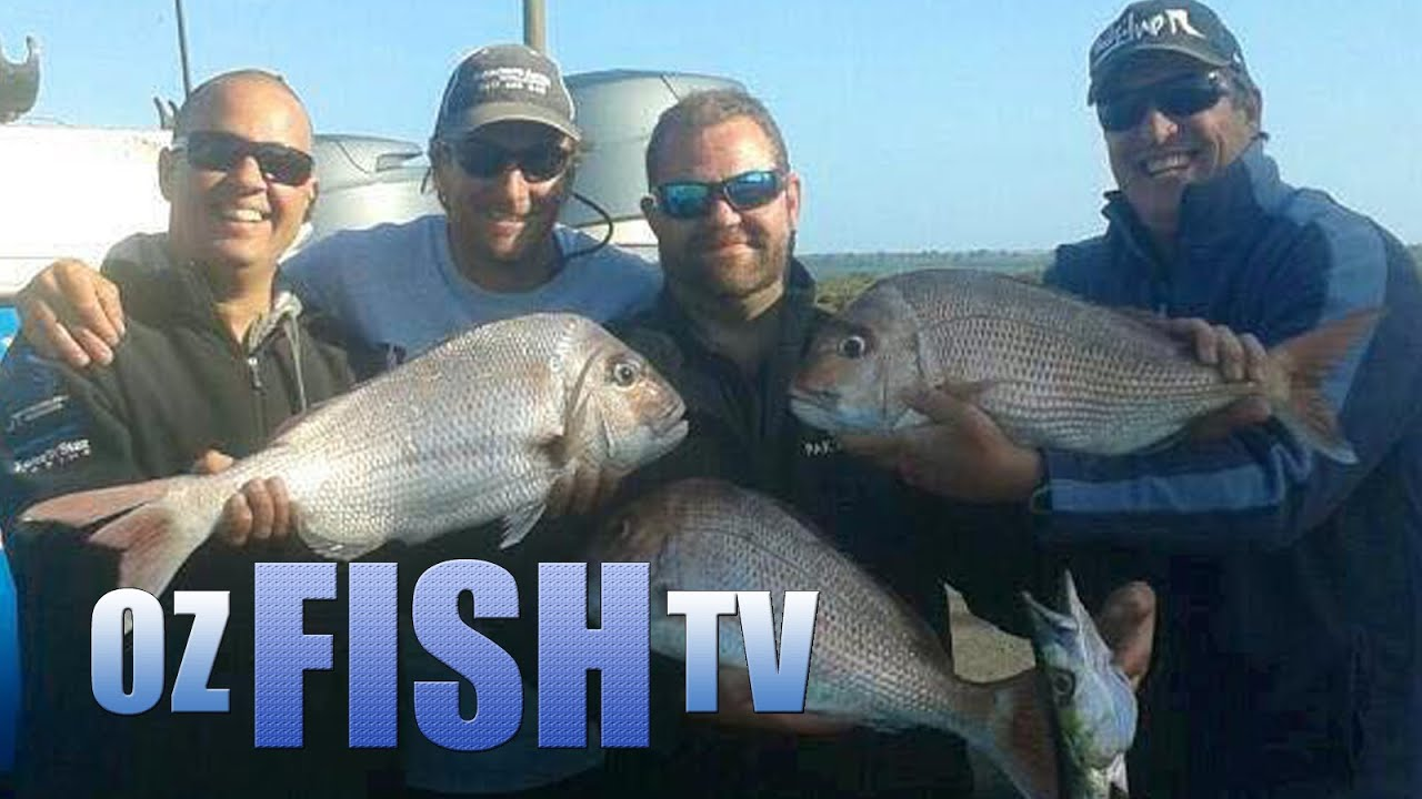Download Oz Fish TV Season 3 Episode 3 - Western Port Snapper on Anchors Away