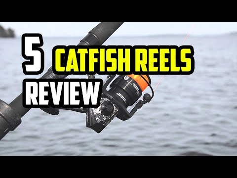 Top 5 Best Catfish Reels 2019 - 2020 | Which Is The Best Catfish Reel?