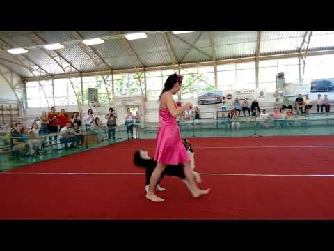 II. Hatvani DaDo Dog Dancing Bajnokság Anikó és Izzy