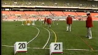 mens shot put final olympic games in seoul 1988 full competition!!!