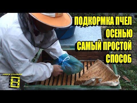 Ловля пчелиных роёв, эффективная ловушка для пчелиных роёв