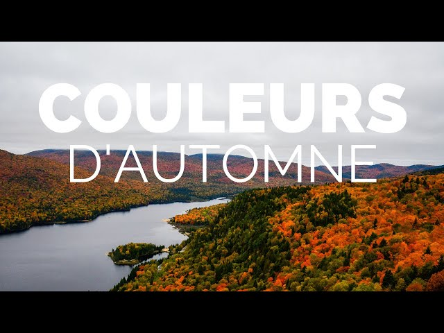 PROFITER DES COULEURS D'AUTOMNE | #QUÉBEC | 🎥 SONY AX100 4K | RONIN-S |