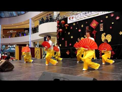 JiHong Chinese New Year Demonstration in West Edmonton Mall 2017