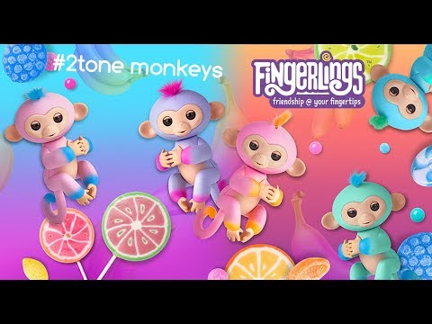 Fingerlings 2Tone 🍒🍭🍉💧 Dipped in Color, Splashing Your Way!