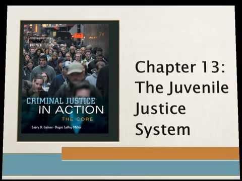 AJ 100   Chapter 13 Juvenile Justice Video Lecture