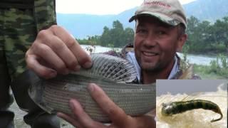 Рыбалка на хариуса на плетню. Мушки для трофеев.
