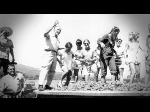 Celebrate the 50th Anniversary of Robert Mondavi Wines