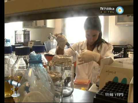Científicos Industria Argentina - 29-06-13 - Genoma del tomate