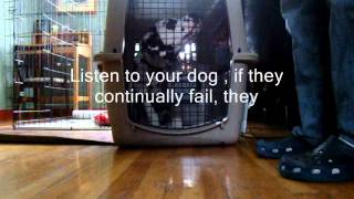 Crate Training -based On Susan Garretts Crate Games Stages 1-2-3