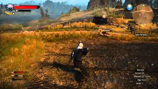 The Witcher 3: Wild Hunt in Glorious 60 FPS
