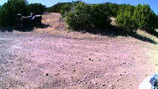 polaris sportsman ace rock climb low range 1/21/14