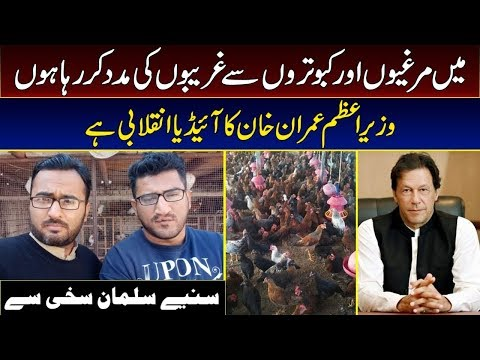 Hen farming is the greatest idea of PM Imran Khan for economic revolution -Salman Sakhi