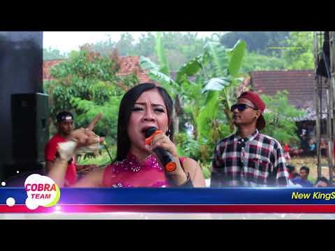 Ora Jodo Putri & Apiip New King Star Cobra Team Live Bandul