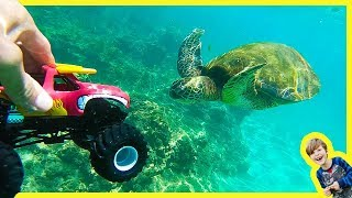 MONSTER TRUCKS SWiM with SEA TURTLES EELS and BOOGERS?!?