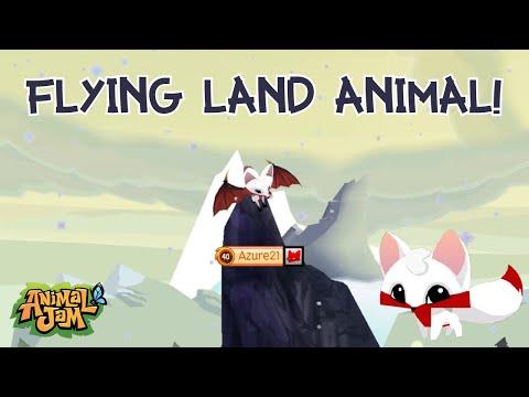Flying Land Animal Glitch! Animal Jam Play Wild