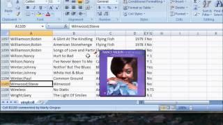 Excel Record Album Database - Add Cover Art