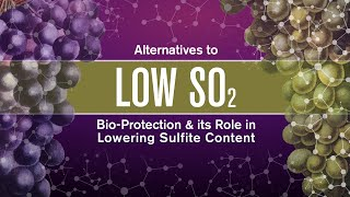 Alternatives to SO2 in Wine; Bio-Protection & its Role in Lowering Sulfite Content (WIN Expo 2019)