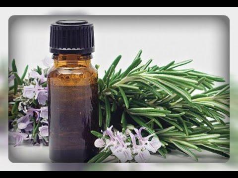 Лечение кашля листьями эвкалипта — Кашель