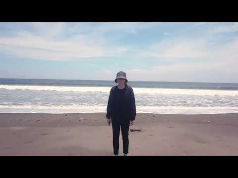 Вулканические чёрные пляжи Санура