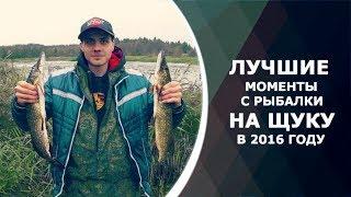 Самые запоминающиеся моменты с рыбалки на щуку в 2016 году. Нарезки с рыбалок