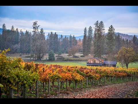 Bayer Family Estate | Oregon
