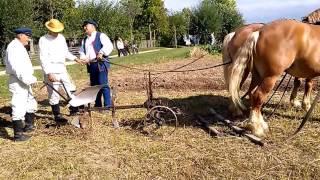 Orka pługiem obrotowym - folklor portal wiano.eu