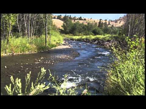 Fish Habitat Improvements on the Deschutes River