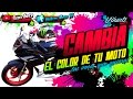 Cambia de color tu moto las veces que quieras (Wrapping) en RT 250