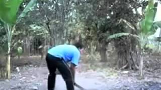 whatsupfunny video