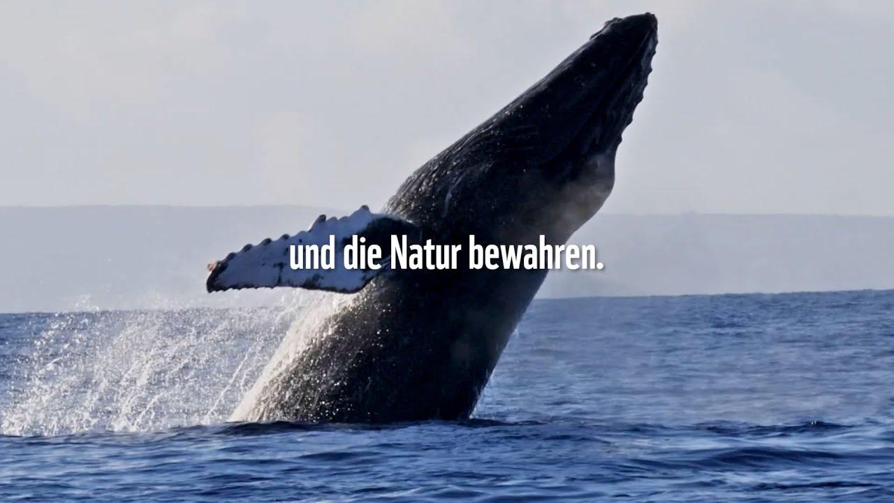 Klima schützen. Leben retten. | WWF Deutschland