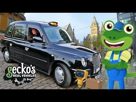 Gecko's TAXI Adventure! | Taxi For Kids | Gecko's Real Vehicles | Cars For Children | Learning Video